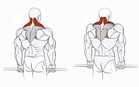 Воздействие на точки для увеличения груди